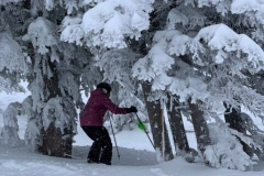 2020 Jackson Hole - Nonie Kelley